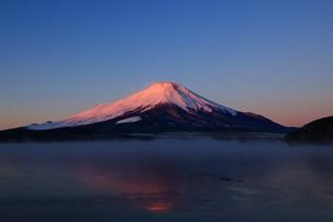 朝日に染まる富士山の写真素材 [FYI00138916]
