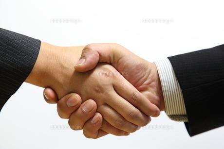 握手の写真素材 [FYI00138934]