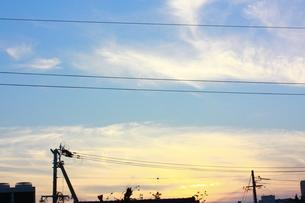 あおとオレンジの写真素材 [FYI00139534]