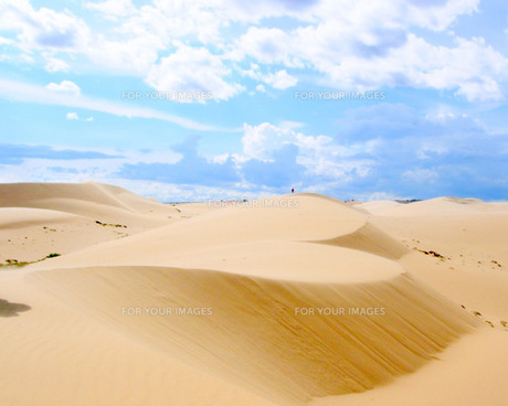 ベトナム砂漠のハートの写真素材 [FYI00139668]