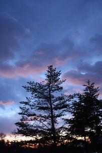 冬の夜明けの空の写真素材 [FYI00139673]