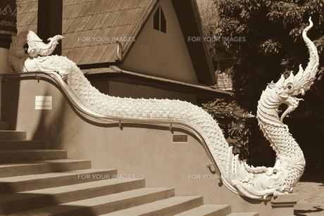 タイ寺院の蛇の写真素材 [FYI00139708]