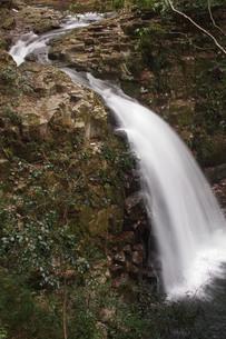 秘境 赤目四十八滝の写真素材 [FYI00140838]