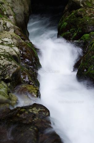 渓流 赤目四十八滝の写真素材 [FYI00140889]