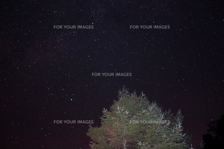 満天の星空の写真素材 [FYI00140982]