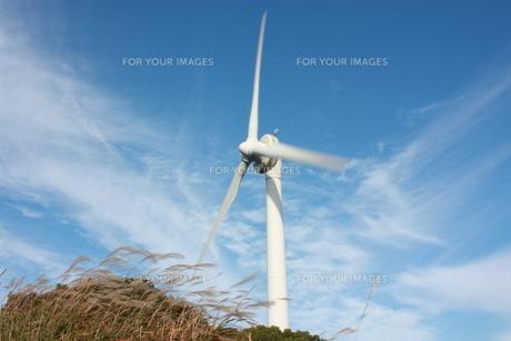 秋の風車の素材 [FYI00141021]