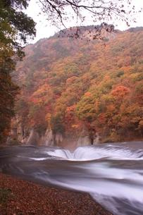 紅葉と吹き割りの滝の写真素材 [FYI00141042]