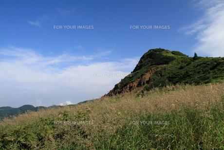 夏山の風景の素材 [FYI00141404]