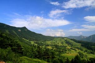 夏山の風景の素材 [FYI00141424]