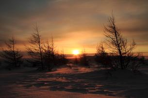 冬の太陽と雪原の写真素材 [FYI00141629]