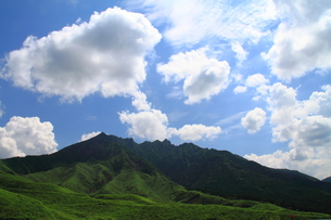 夏山の風景の素材 [FYI00141823]