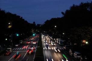 代々木公園の夜景の写真素材 [FYI00142224]
