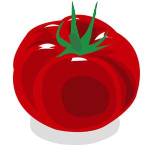 トマトの写真素材 [FYI00142333]