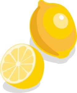 レモンの写真素材 [FYI00142336]