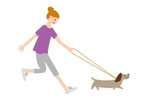 犬を散歩させる女性の写真素材 [FYI00142413]