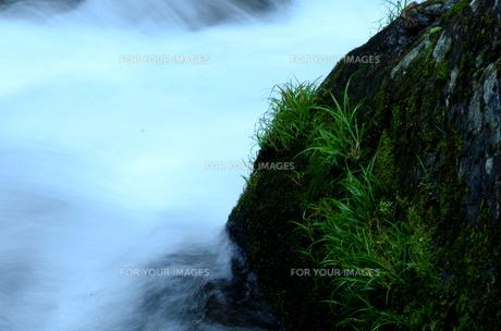 清水の涼の素材 [FYI00142789]