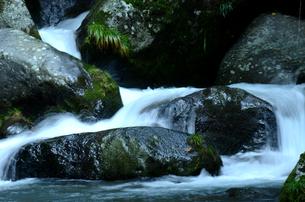 濡れた岩の素材 [FYI00142792]