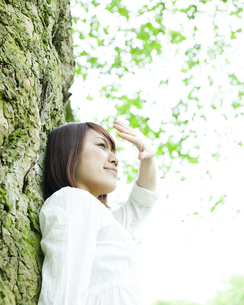 木の下で手をかざす女性の素材 [FYI00143140]
