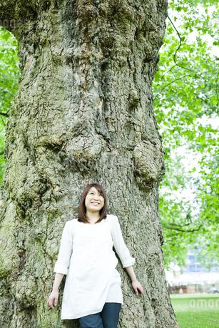 公園で木にもたれる若い女性の素材 [FYI00143141]