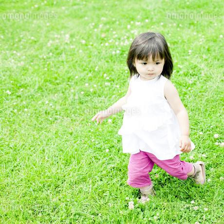 公園で遊ぶハーフの少女の写真素材 [FYI00143149]