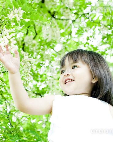 植物に触れるハーフの少女の写真素材 [FYI00143190]