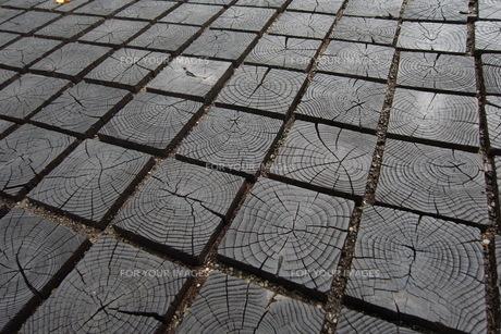 木のタイルの写真素材 [FYI00143275]