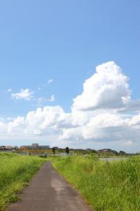 夏空の写真素材 [FYI00143534]