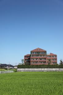 青空とマンションと水田の写真素材 [FYI00143551]
