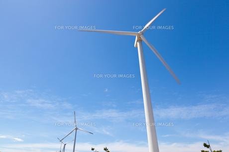 風力発電所の写真素材 [FYI00144066]