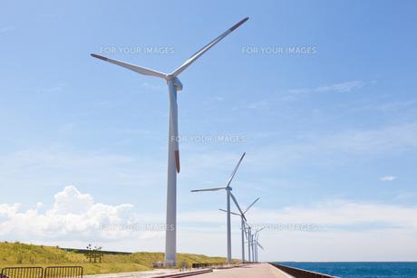 風力発電所の写真素材 [FYI00144072]