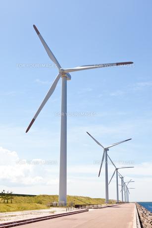 風力発電所の写真素材 [FYI00144099]