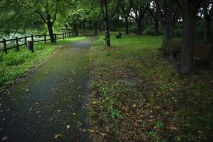 自然公園の写真素材 [FYI00144284]
