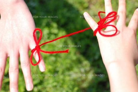 赤い糸の素材 [FYI00144383]