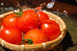 トマトの写真素材 [FYI00144433]