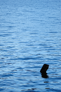 日光中禅寺湖の写真素材 [FYI00144561]