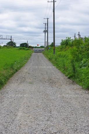 道の写真素材 [FYI00144803]