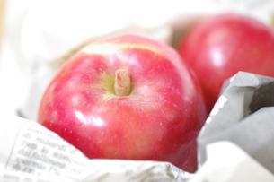 採れたてのりんごの写真素材 [FYI00144843]