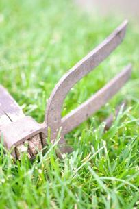 芝生と古いクワの写真素材 [FYI00144844]