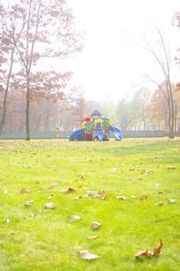 秋の終わりの公園の写真素材 [FYI00144860]