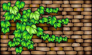 レンガ壁にツタの葉の写真素材 [FYI00144906]