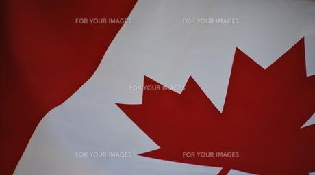 カナダ国旗の写真素材 [FYI00144934]