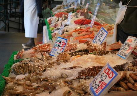 市場の魚介類の写真素材 [FYI00144970]