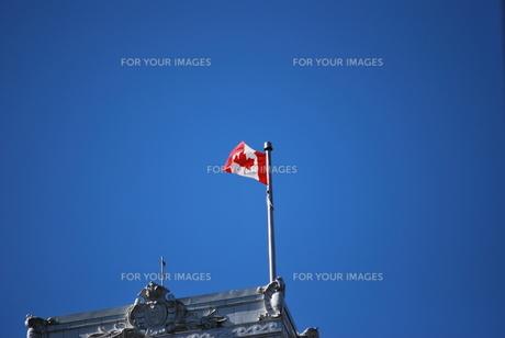 はためくカナダ国旗の写真素材 [FYI00144977]