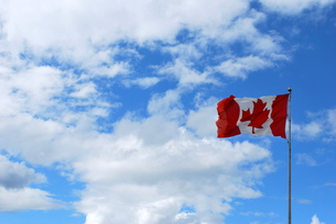 翻るカナダ国旗の写真素材 [FYI00145124]