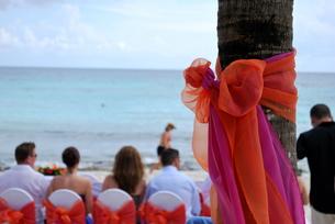 カリブ海のウェディングの写真素材 [FYI00145139]