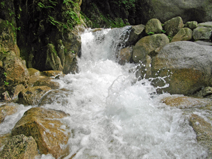 渓流の激しさ・・・涼!の写真素材 [FYI00145261]