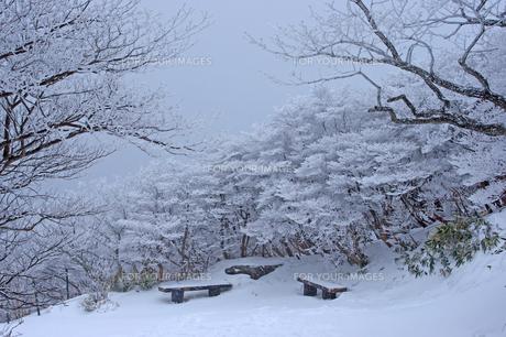 御在所岳山頂付近の雪景色の素材 [FYI00145321]