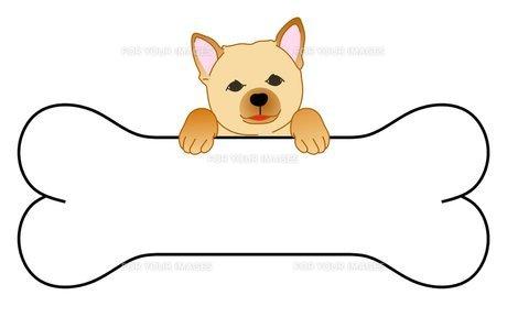 犬のメッセージボードの写真素材 [FYI00145593]