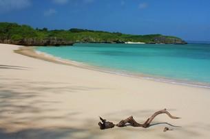 秘密のビーチの写真素材 [FYI00145795]