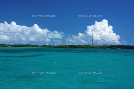 沖縄の夏の写真素材 [FYI00145807]
